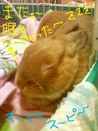 Sn341142_2